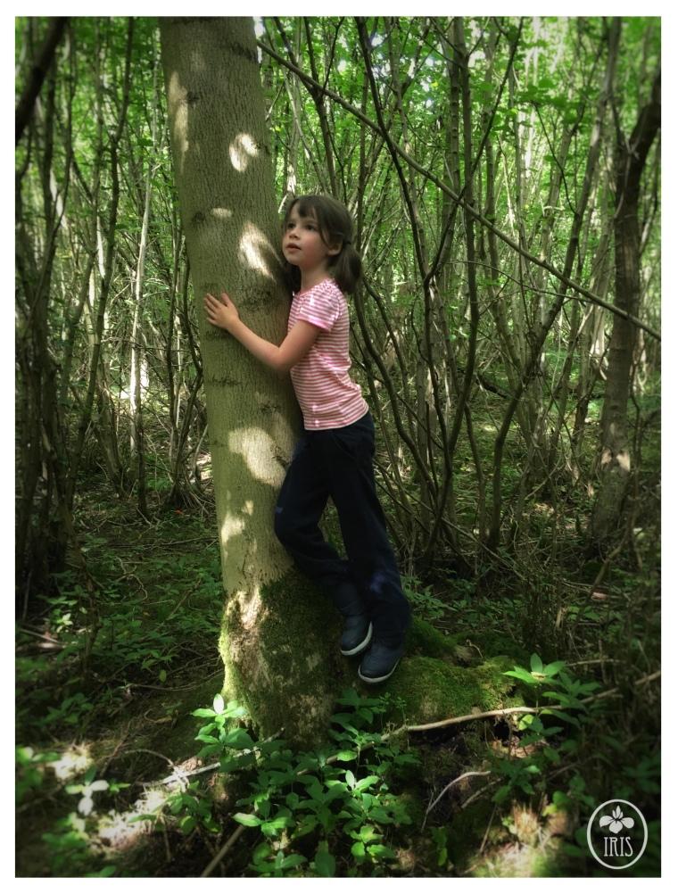 woodland elf